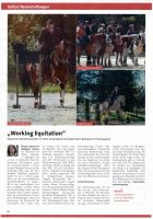 Presse myheimat Working Equitation 2018
